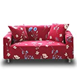 HOTNIU Stretch Sofa Loveseat Cover Pattern Arm Chair Couch Slipcover for 1 2 3 4 Seat Armchairs/Loveseats/Sofas/Sectional Couches (Loveseat 53'' - 67'', Pattern #1)