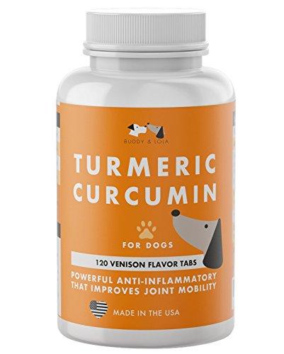 Buddy & Lola Turmeric Curcumin for Dogs - Anti Inflammatory Improves Joint Mobility for Strong Hip and Joint Fitness - 120 Chewable Venison Flavor Turmeric for Dogs