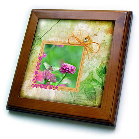 3dRose Beverly Turner Insect and Flora Photography - Hummingbird Hawk Moth on Pink Zinnia Flower, Framed in Leaf Print - 8x8 Framed Tile (ft_299600_1)