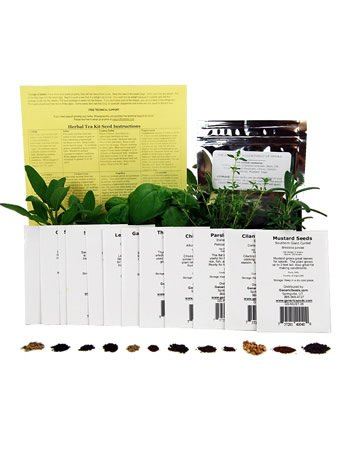 Assortment of 12 Culinary Herb Seeds - Grow Cooking Herbs- Parsley, Thyme, Cilantro, Basil, Dill, Oregano, Sage, More (Micro Plant Grower compare prices)