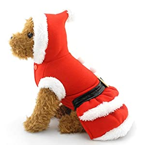 SMALLLEE_LUCKY_STORE Small Dog Clothes for Girls Boys Cat Dog Christmas Costume Hooded Fur Trim Dress Belt Decorated Winter, Medium, Red