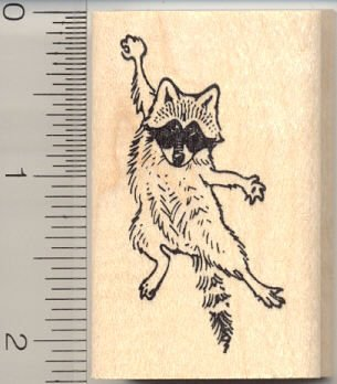 Hang in There Raccoon Rubber Stamp