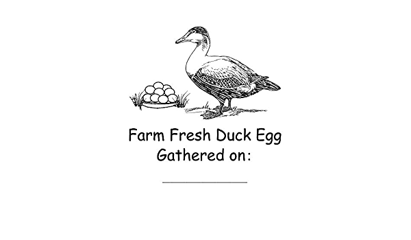 MADE IN USA Homestead Farm Egg Rubber Stamp Cute Gifts For Duck Owner Made With Love Duck Egg Stamps Mini Farm Fresh Custom Egg Stamp