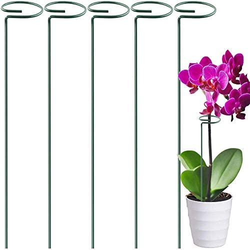 ACCEDE 5 Pack Plant Support Stakes, Garden Flower Support Stand Steel Single Stem Plant Cage Support Ring for Flowers, Bonsai, Tomatoes, Peony, Calla Lily, Rose - 40cm