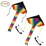 COM4SPORT Rainbow Delta Kite for Kids and Adoults 42 Inches Wide 56 Inches Tail with 328 Feet Long String 2 Pack