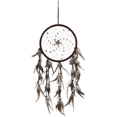 DreamCatcher ~ SPIRAL PATTERN WITH TIGER EYE ~ Approx 8.5