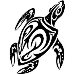Amazoncom Unique Tribal Turtle Tattoo Design Vinyl Sticker Wall