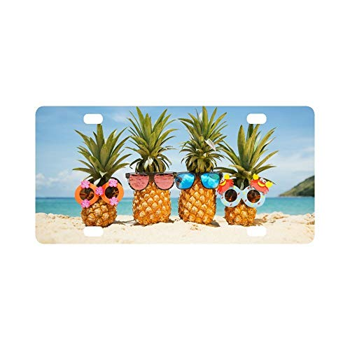 Funny Tropical Summer Beach Pineapples Wearing Sunglasses Novelty Humor Chrome Aluminum License Vanity Tag Frame ()
