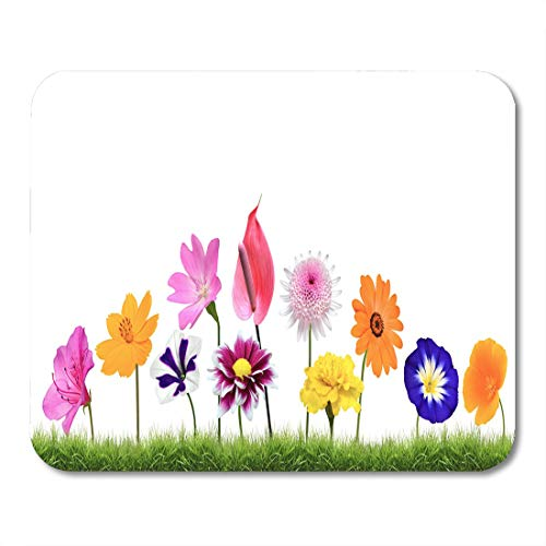 Emvency Mouse Pads Colorful Wildflower Flowers Growing in The Grass White Vibrant Mouse Pad for notebooks, Desktop Computers mats 16