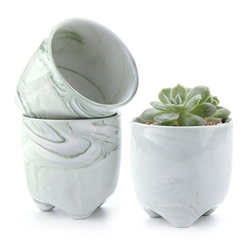 T4U 6CM Keramik Sukkulenten Töpfe Kaktus Pflanze Töpfe Mini Blumentöpfe Eiscreme Serie Rosa 6er Set