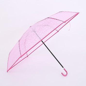 ZQ @ QX plegable paraguas, nice viento transparente tóner