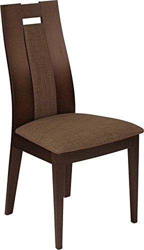 Contemporary Design Finish (Contemporary Design Dining Chair with Espresso Wood Finish & Brown Fabric)