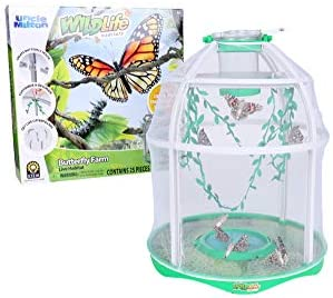 Uncle Milton Butterfly Farm Live Habitat – Observe Butterfly Lifecycle in Garden – Includes Voucher to Redeem for Caterpillars