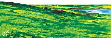 Hillside Overlay Large Felt for 32
