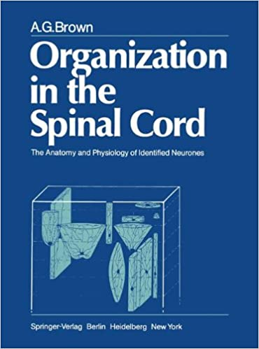 Evidence of acute inflammatory reaction in the spinal cord.