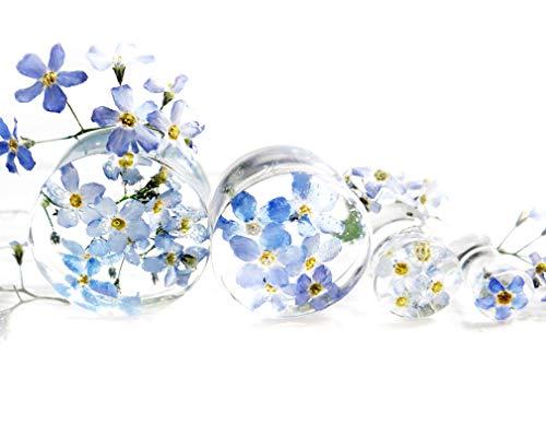 Eternity31 Forget me not Blue Flower Plug Earrings Resin Wedding gauges Terrarium Jewelry 2g / 6mm / 1/4