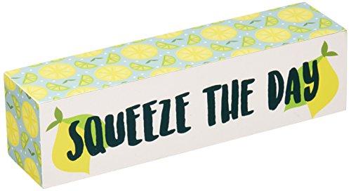 Pavilion Gift Company Decorative Squeeze The Day 6 x 1.5 Mini Plaque