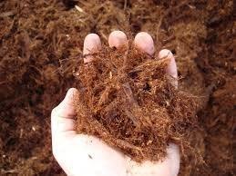 (MIGHTY109 GORILLA HAIR Shredded Redwood Mulch 30 quarts plus 10 quarts)