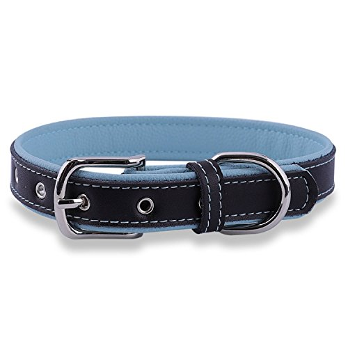 Dog Cat Leather Collar - Epic Rogue Leather Dog Collar and Cat Collar, Soft Padded Genuine Leather Pet Collar for Female Male Cats Puppy and Small Medium Large Dogs(Neck 7.5''-10'', Blue, XSmall)