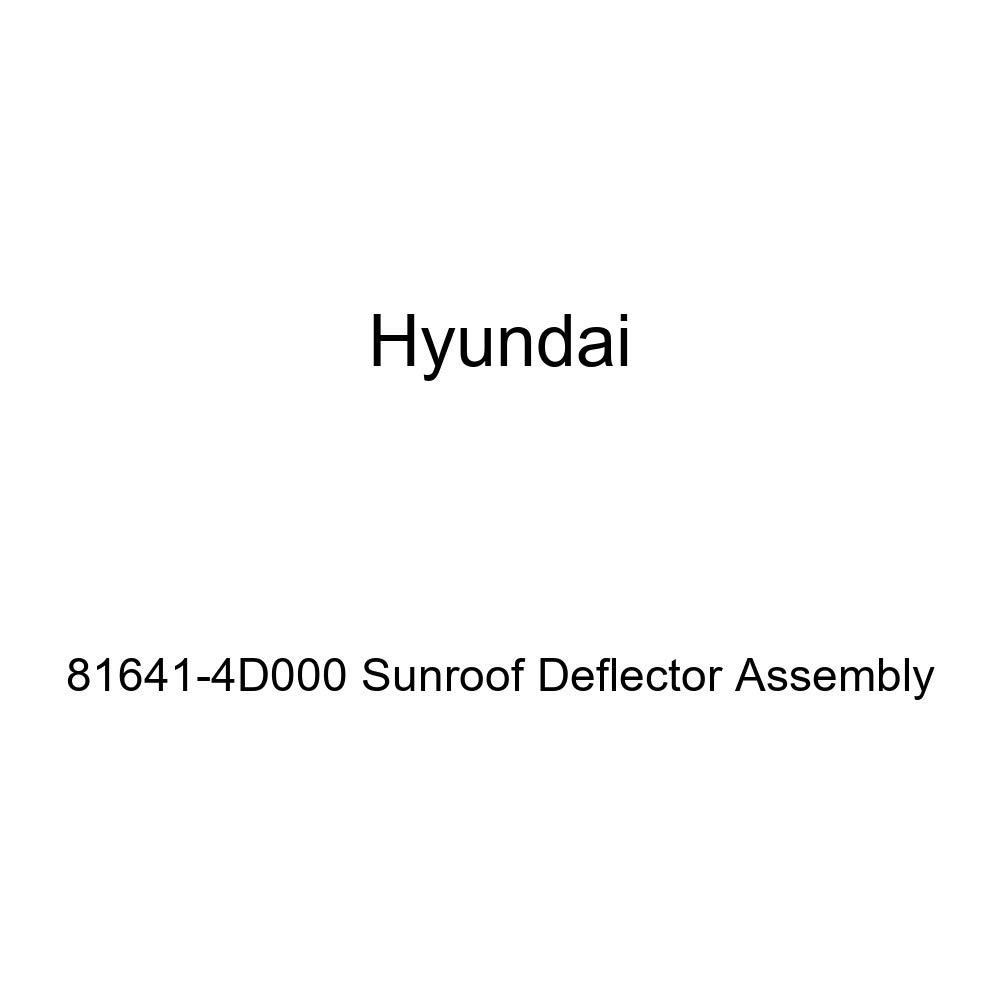 Genuine Hyundai 81641-4D000 Sunroof Deflector Assembly