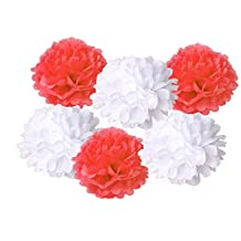 HEARTFEEL 6pcs Tissue Paper Pom Poms Flower Ball Hanging Pom for Wedding Party Outdoor Decoration Bridal Shower Party Baby Shower (White and Coral)