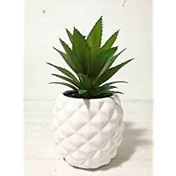 "Artificial Potted Succulent 7.8"" Pineapple (white )Home & Tabletop Decoration"