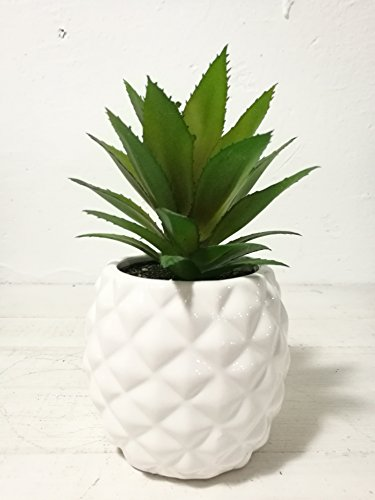 Artificial Potted Succulent 7.8'' Pineapple (white )Home & Tabletop Decoration by Pretty Home