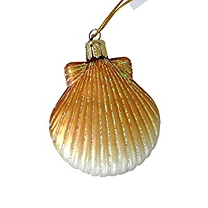 41iEp-nobvL._SS300_ 100+ Best Seashell Christmas Ornaments