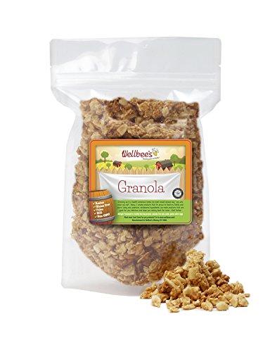 Wellbee's Super Crunchy Grain Free Granola, Paleo & SCD Approved, 10 oz.