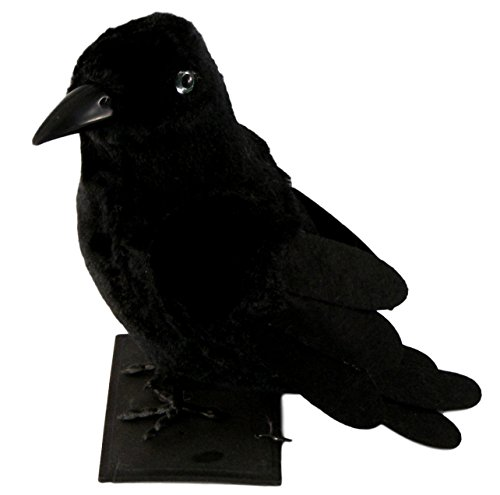 Spooky Halloween Table Top Raven (Cape Town Halloween Party)