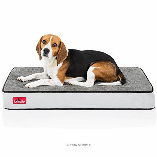 "Brindle Orthopedic Memory Foam Pet Bed, Medium , 34"" X 22"" X 4"", Charcoal Black"