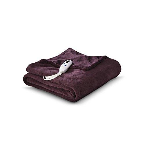 Biddeford Heated MicroPlush Throw, 50 by 62-Inch, Purple (Biddeford Blankets Cord)