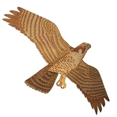 Jackite Assembled - Jackite Assembled Peregrine Falcon Bird Kite, Wind Sock, Pest Deterrent