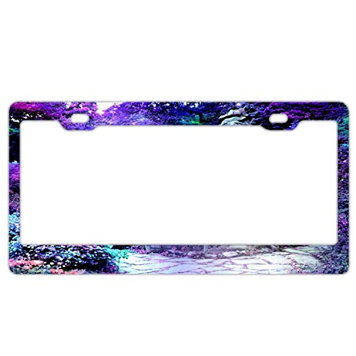 - FunnyLpopoiamef Purple House Road Charmed Forest Blue Flowers License Plate Frame For Women/girl,Car Licenses Plate Covers Waterproof License Tag Stainless Steel Metal Frame