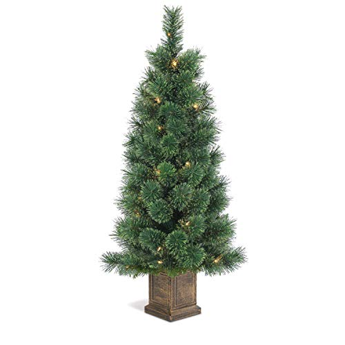 Outdoor Lighted Topiary Trees in US - 7