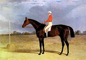 Metal Sign Herring Snr John Frederick A Dark Bay Racehorse With Patrick Connolly Up A4 12x8 Aluminium