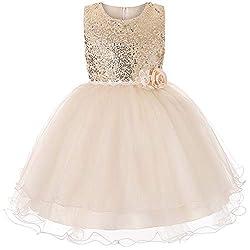 Little Girls Sequin Mesh Ball Gown