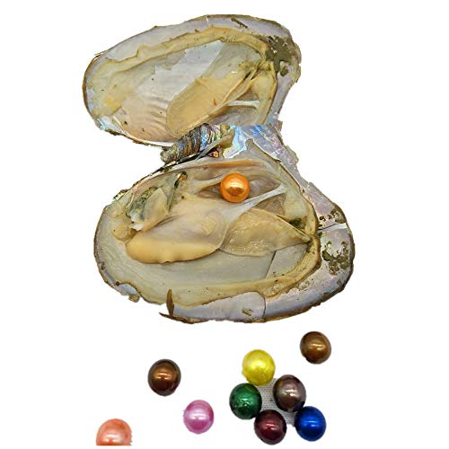 (10PCS Oysters with Colored Edison Pearl Inside,Edison Pearl Oysters,Mini Monster Oyster)