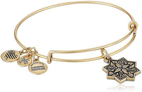 Alex and Ani Healing Love II Bangle Bracelet, Rafealian Gold, Expandable by Alex and Ani (Image #1)'