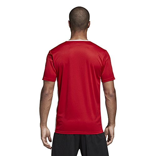 Uomo Adidas T Power white 18 Red Entrada shirt rIqrC