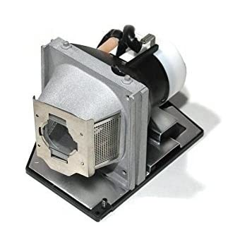 Optoma Replacement Lamp with Housing and Original Bulb for TH1060P; TX779P-3D; BL-FS300
