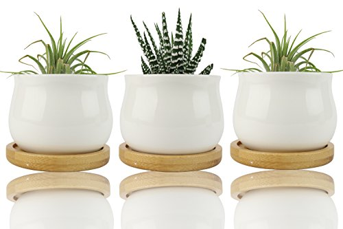 NeutralPure ECO White Succulents Pots with Drainage Bamboo Trays (3 Pcs Ceramic ()