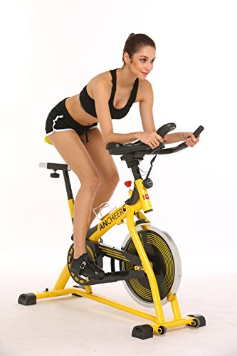 Belt Drive Indoor Cycling Bike, Best Spin Bike for Home (S-3373) (Yellow) YUEBO