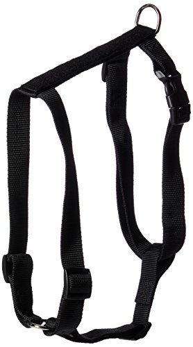 Zack & Zoey Butterfly Glow Harness Costume for Dogs, X-Large ()