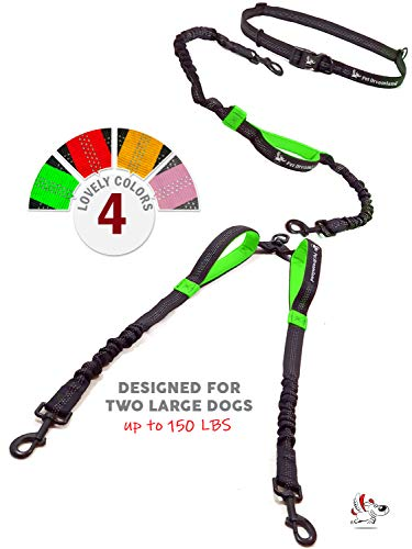 (Pet Dreamland Dog Leash for Two Dogs - 2 Dogs Coupler Hands Free No Pull Tandem Dual Waist Leash for Large Dogs (Black & Green))