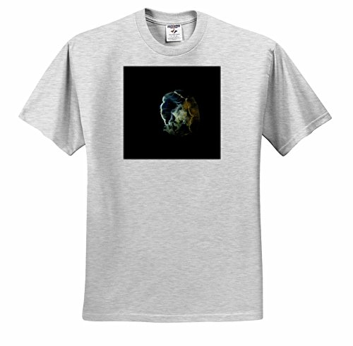 3dRose Danita Delimont - Marine Life - Visible bioluminescence Shows This Moon Jellyfish Clearly - T-Shirts - Adult Birch-Gray-T-Shirt XL (ts_229520_21)
