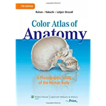 Color Atlas of Anatomy: A Photographic Study of the Human Body, North American Edition: Written by Johannes W Rohen, 2010 Edition, (7th Edition) Publisher: Lippincott Williams & Wilkins [Hardcover]