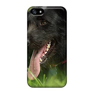 FfQ41798goBI Skin For Iphone 5C Phone Case Cover (yorkshire Terrier)