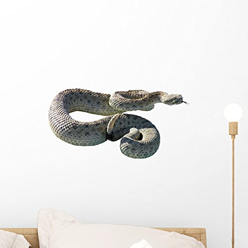 Wallmonkeys Rattle Snake Wall Decal Peel and Stick Graphic WM160039 (18 in W x 13 in - Snake Wall Decals