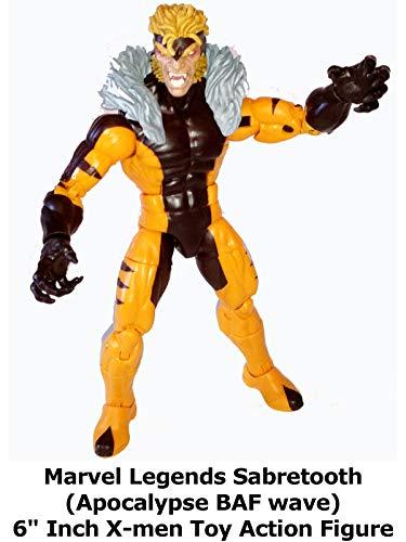 """Review: Marvel Legends Sabretooth (Apocalypse BAF wave) 6"""" Inch X-men Toy Action Figure"""
